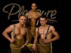 Pleasure Nights - Male Revue Show